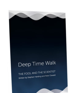 Deep Time Walk Book