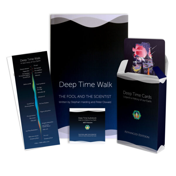 Deep Time Bundle 2020